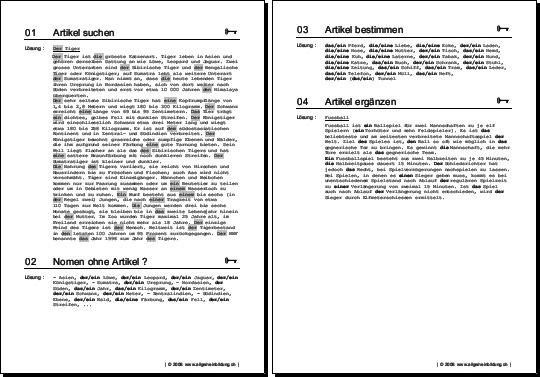 Nomen Artikel Gratis Deutsch Arbeitsblatt 8500