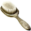 the brush | la brosse
