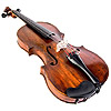 the violin | le violon